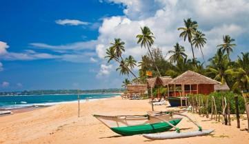 Незабываемый отдых на Шри Ланке!