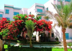 отдых в Хургаде, Египет