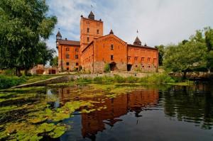 замок Радомисль в Радомишлі
