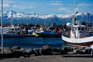 судноплавство в Ісландії