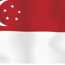Виза в Сингапур