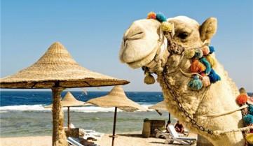 Манящий осенний Египет
