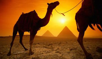 Всего 331$ за тур в Египет