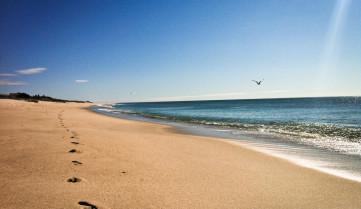 Пляж, Оушен-Бич