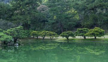 Природа, остров Сикоку