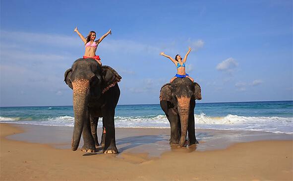 Катання на слонах, Таїланд