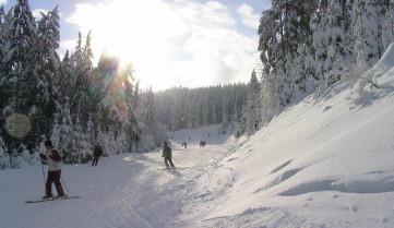 Бакуриани, горнолыжный спуск