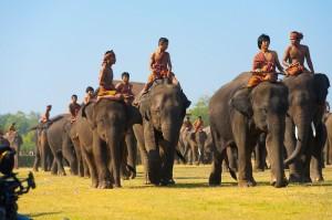 слоновьи питомники, Таиланд