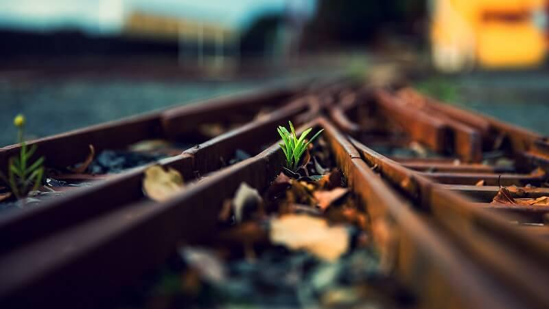 Маршрут Запорожье — Харьков приобрел новый поезд