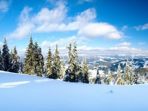 встреча нового года в горах