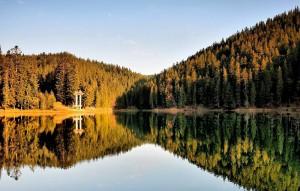 зелёный туризм в Украине
