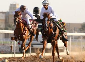 скачки на конях, Катар