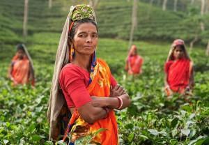 поездка в Бангладеш