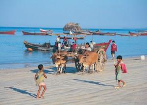 население Мьянмы