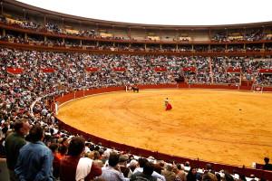 Арена Миэрин: тур в Испанию