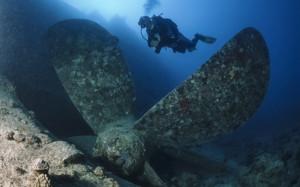 погружение под воду в Новой Зеландии