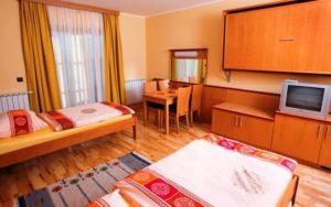 номер в Videc Hotel & Apartments 3*, Мариборское Похорье, Словения