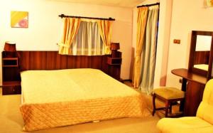 номер в отеле Valevicata 3*, Болгария, Банско