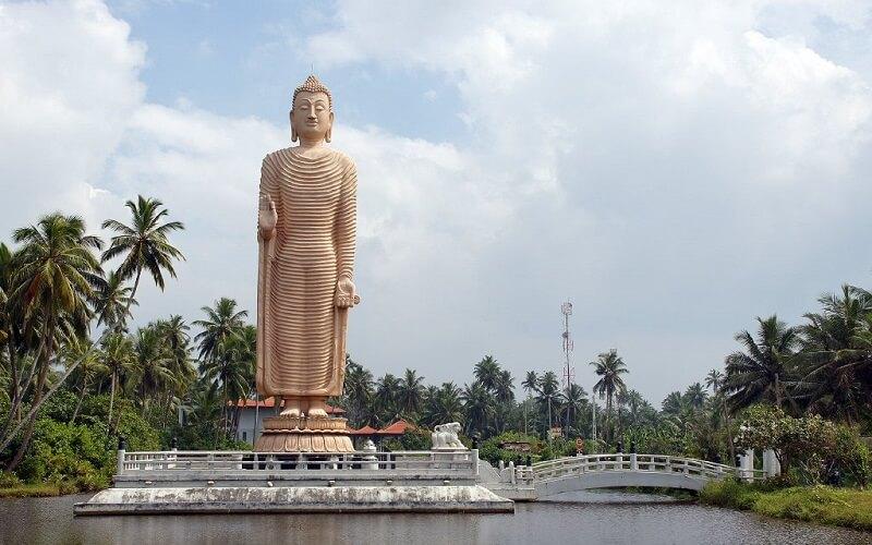 горящий тур в Хиккаднва, Шри-Ланка
