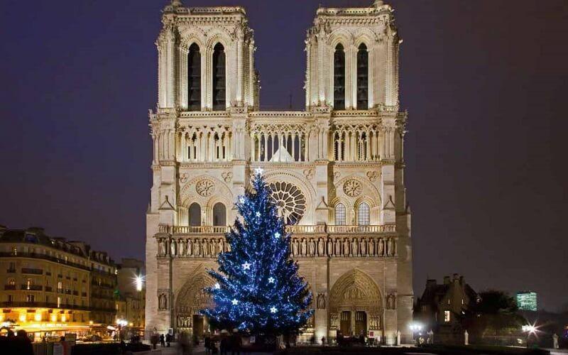 ёлка возле Нотр-Дама в Париже