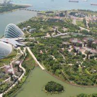Львов — Сингапур
