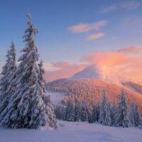 Экстремальный тур: зимний поход в Карпаты по хребтам горного массива Горганы