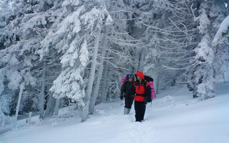 зимний туризм в Карпатах