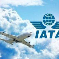 Информация и условия IATA