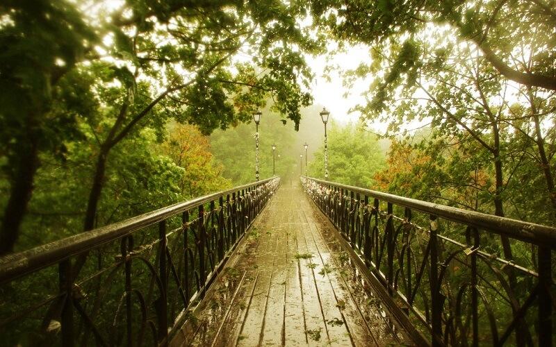 киевский мост влюблённых