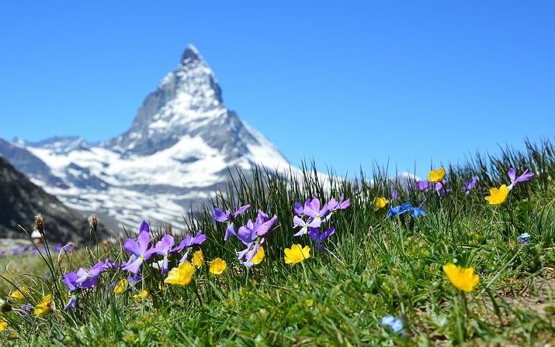 природа Швейцарії