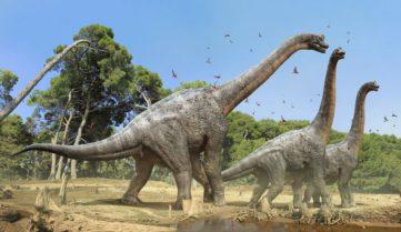 Туристів пустять в італійську «Долину динозаврів»!