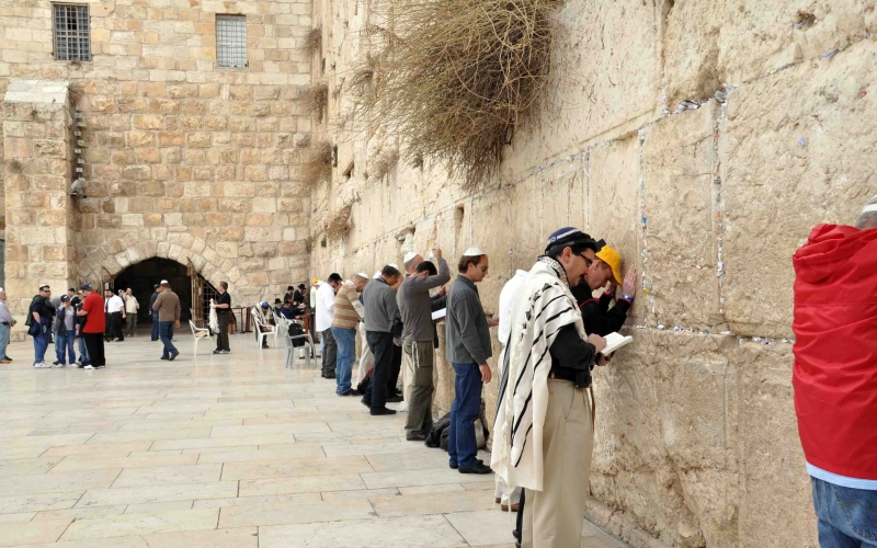 Молятся у стены Плача, Израиль