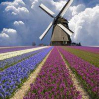 Нидерланды — королевство свободы, толерантности и высокой культуры