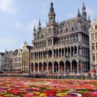 Запорожье — Брюссель