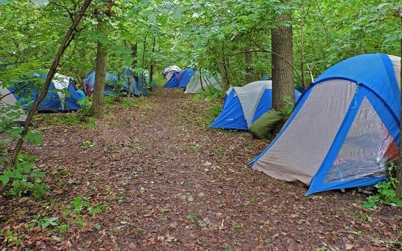 наметовий табір «Мандрівник - еколог»