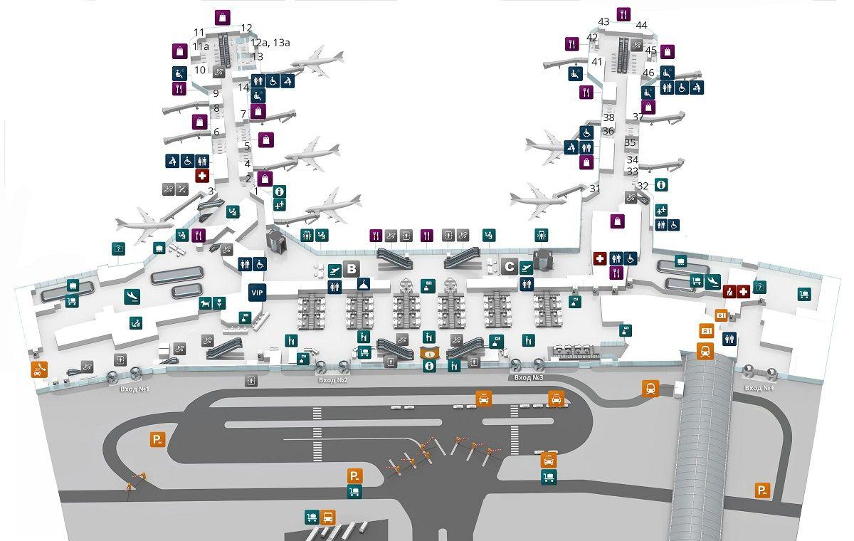 Аэропорт Домодедово первый этаж