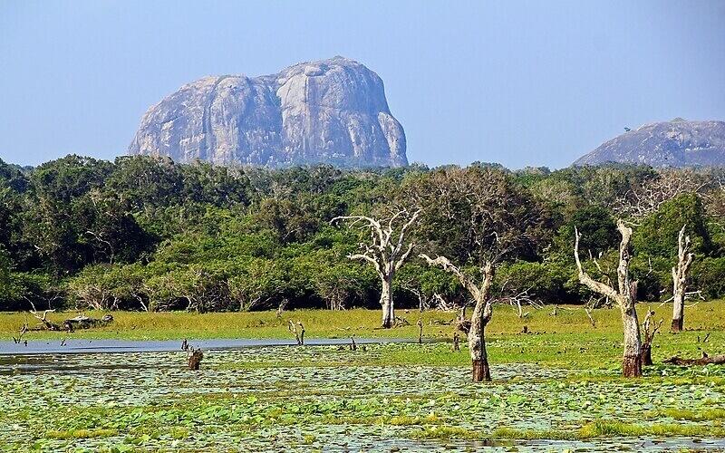 Национальный парк Яла, Шри-Ланка