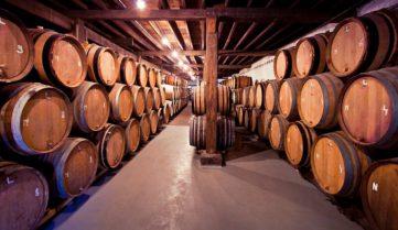 Італійці побудували місто-музей… вина!