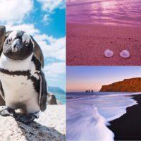 Невероятные пляжи мира: от цветного песка до купания с пингвинами