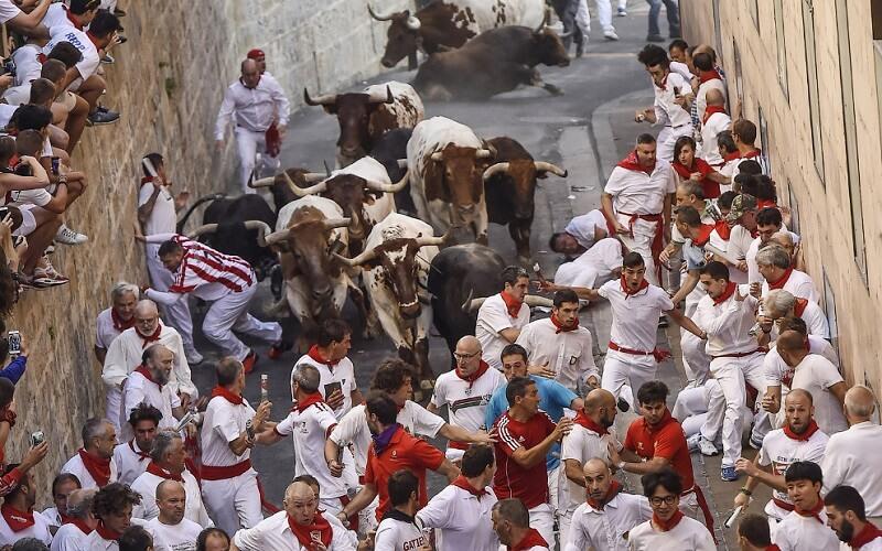 Ранковий забіг від биків