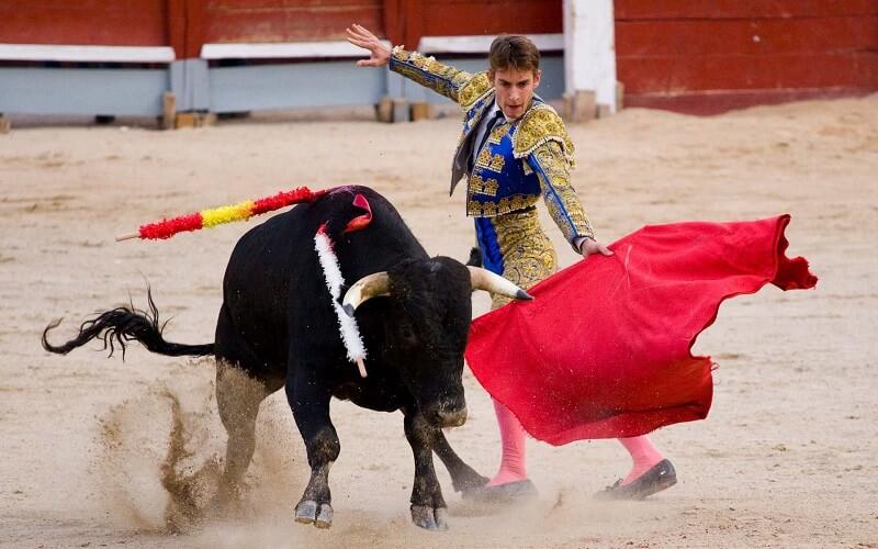 Матадор дратує бика
