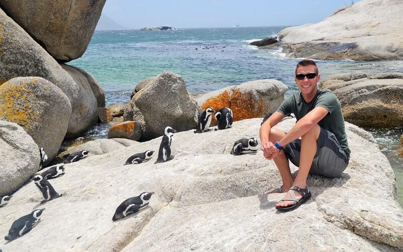 Пляж в Африці з пінгвінами