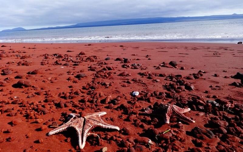 Червоний пляж, острів Рабіда