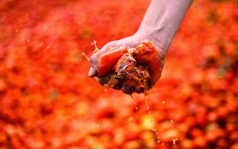 Правила Томатины - раздавить помидор