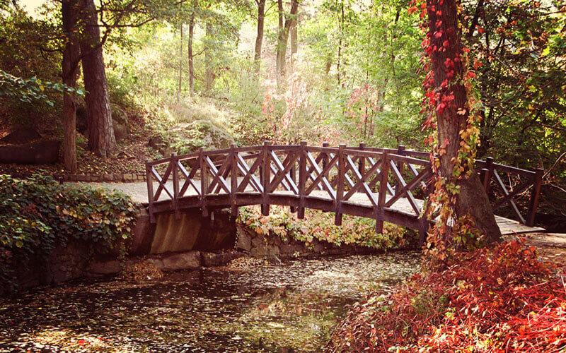 Софіївка осінь