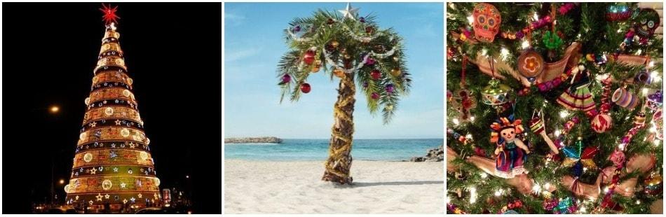 Новогоднее дерево Южной и Северной Америки