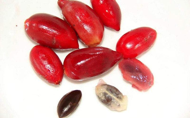 Чудесные ягоды