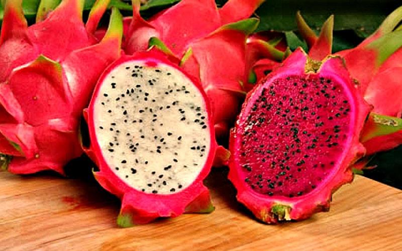 Питахайя – драконий фрукт