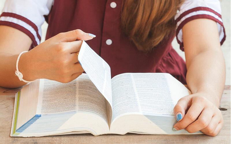 Языковые курсы за рубежом
