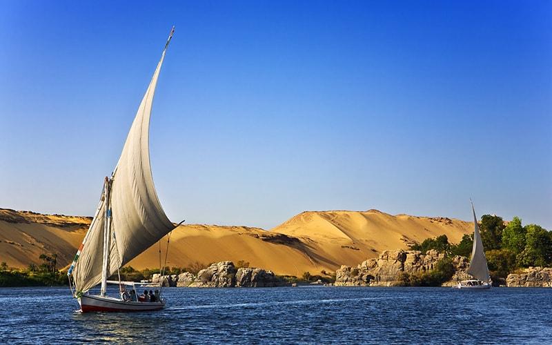8 марта в Египте